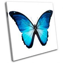 Morpho Butterfly Blue Animals - 13-0535(00B)-SG11-LO